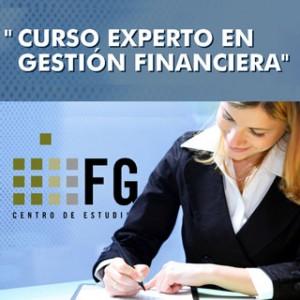 Curso Experto Gestión Financiera